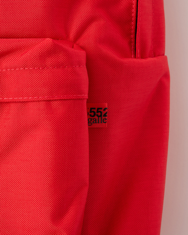 """BIG"" BACKPACK 詳細画像 RED 5"